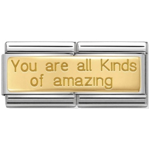 Nomination - Double Link 18K 'You Are All Kinds Of Amazing' 030710/22