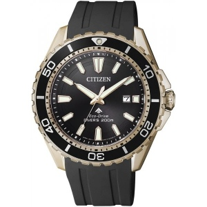 Citizen BN0193-17E Diver's